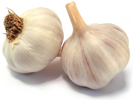 Ricette con aglio calorie aglio proteine aglio for Quando piantare l aglio